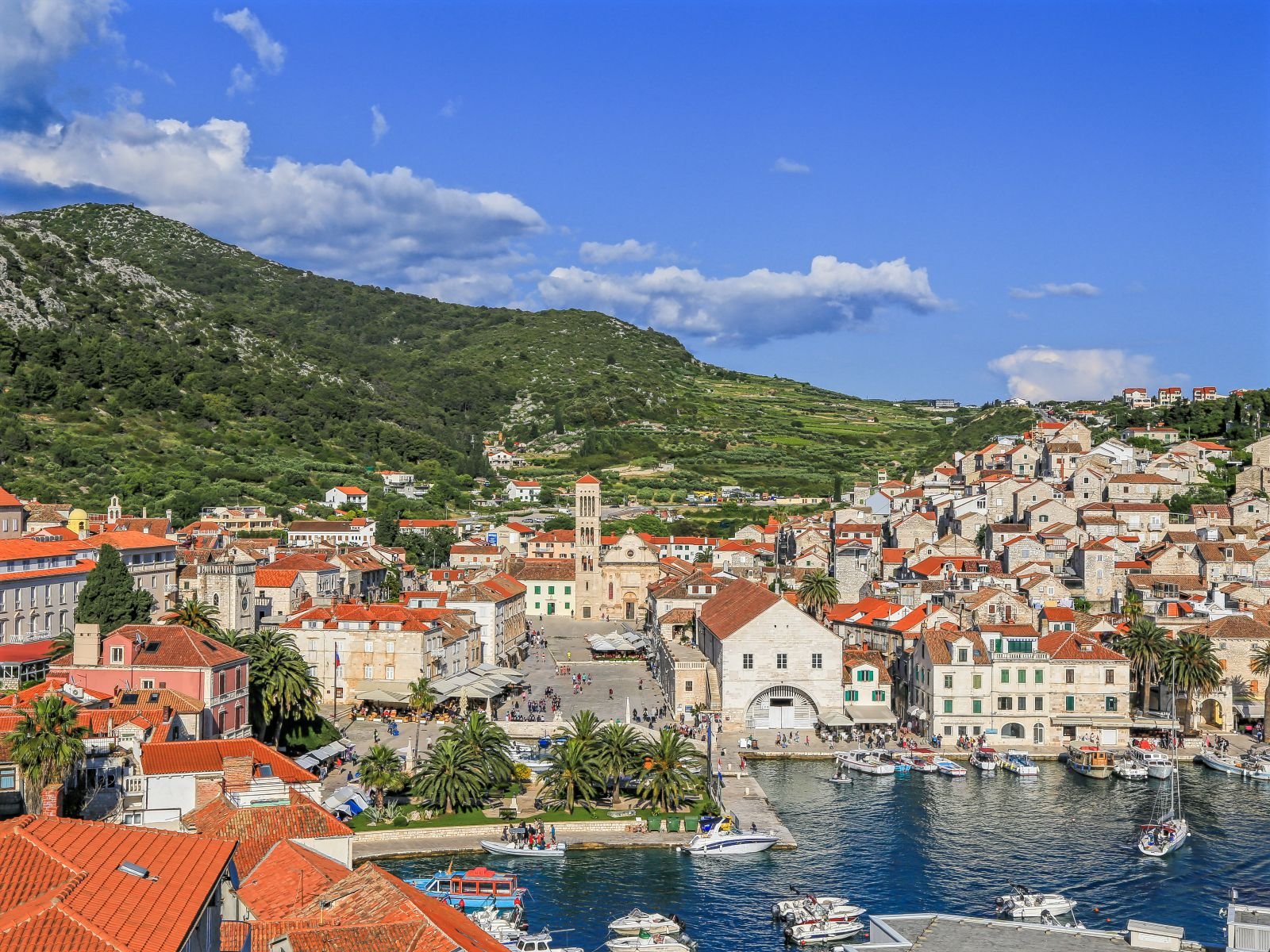 tourists love Hvar