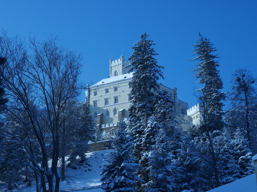 Winter in Trakošćan, Croatia, OLYMPUS DIGITAL CAMERA